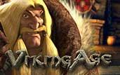 vikingage