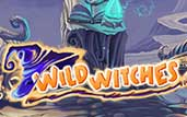 wild_witches