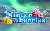 winter_berries